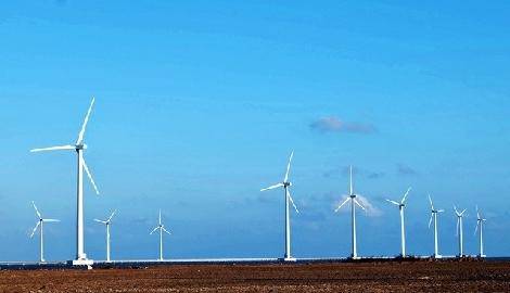 Cánh đồng quạt gió ở Bạc Liêu đang 'gây thương nhớ' vì đẹp như ở trời Tây