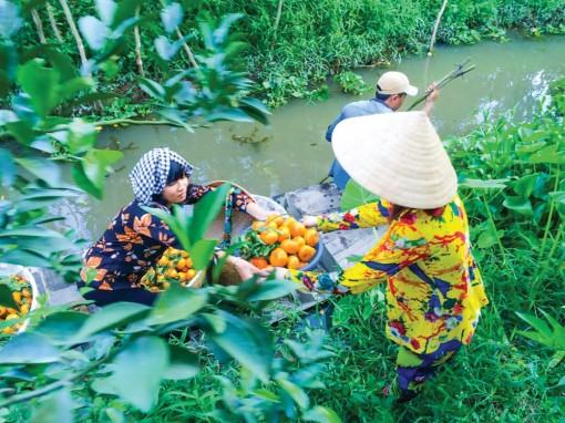 Làm gì khi liên kết du lịch và nông nghiệp?
